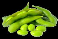 Edamame (Soybeans)