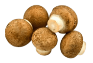 Mushrooms, Crimini