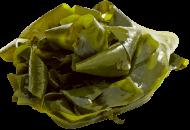 Seaweed, Wakame